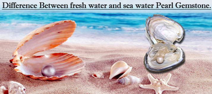 Difference between fresh water and sea water pearl gemstone